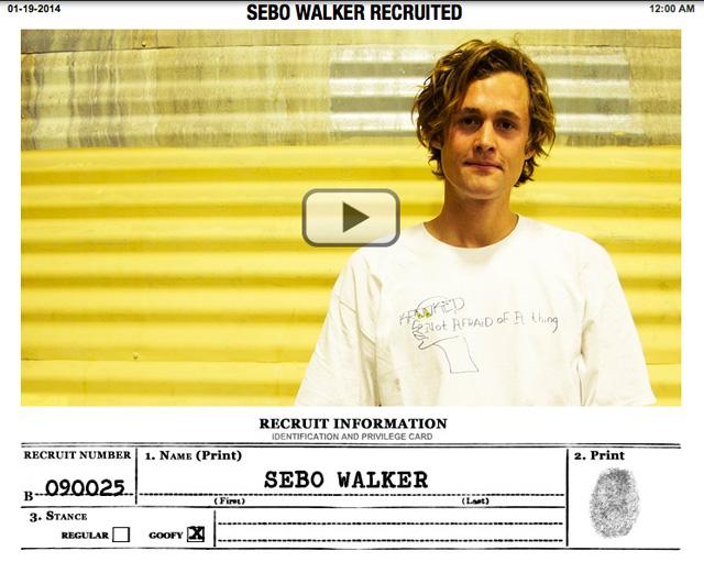 SEBO WALKER